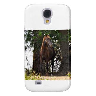 Morgan Horse Samsung Galaxy S4 Cases