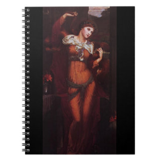 Morgana le Fay (Morgan Pendragon) Notebooks