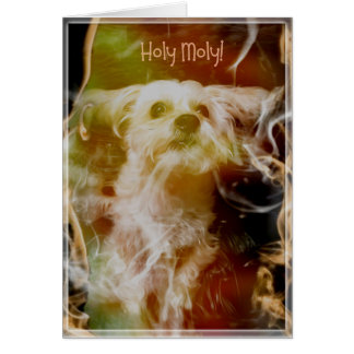 Morkie Dog Puppy Fire Funny Humor Birthday Card