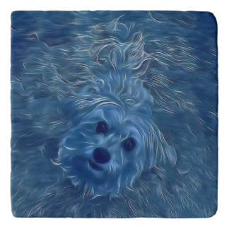 Morkie Puppy Dog Blue Fantasy Marble Stone Trivet