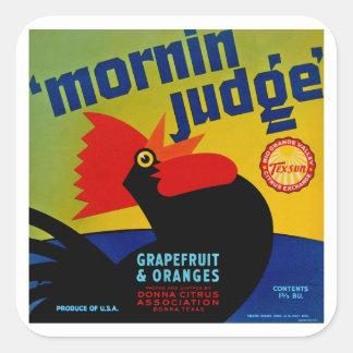 Mornin Judge Square Sticker