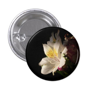Morning Bloom Pinback Buttons