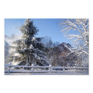 Morning Crisp 12x8 Photographic Print