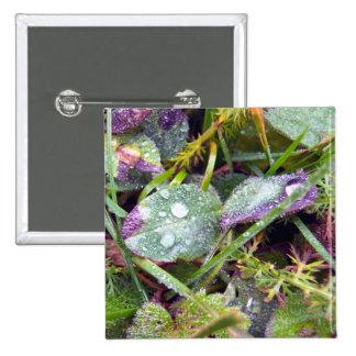 Morning Dew Pinback Button