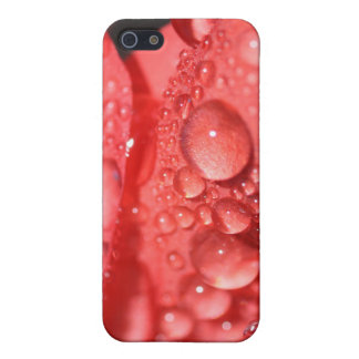 Morning Dew Case For iPhone 5/5S