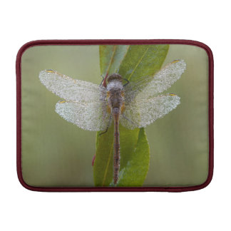 Morning dew Dragonfly MacBook Sleeve