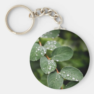 Morning dew in garden basic round button key ring