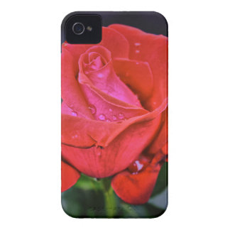 Morning Dew iPhone 4 Case-Mate Case