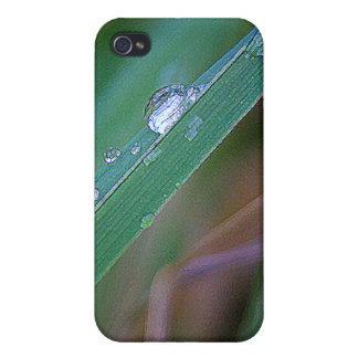 Morning Dew Cases For iPhone 4