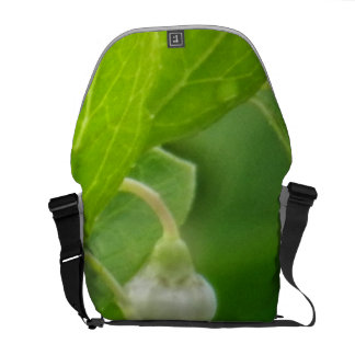 Morning Dew Courier Bags