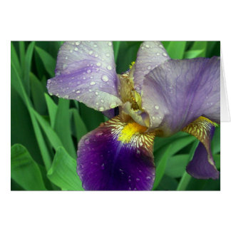 """""""Morning Dew"""" Note Card"""