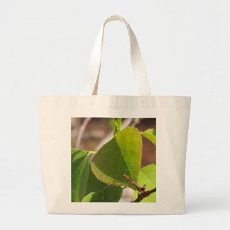 morning Dew on Chinese tallow leaf Large Tote Bag