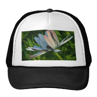 Morning Dew On Flower Trucker Hats