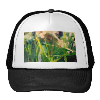 Morning Dew On Grass Trucker Hat
