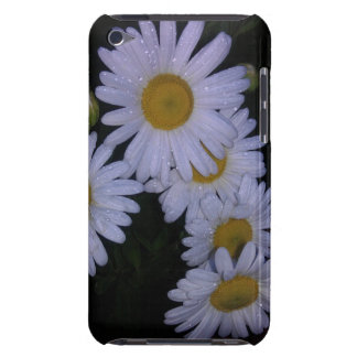 morning dew on montauk daisy iPod touch Case-Mate case