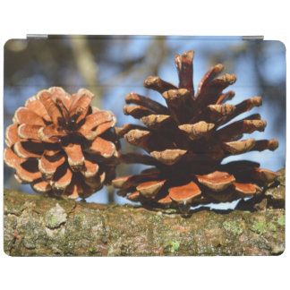 Morning Dew On Pine Cones iPad Cover