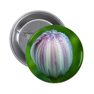Morning Dew On Purple White Flower In Balboa Park Pinback Button