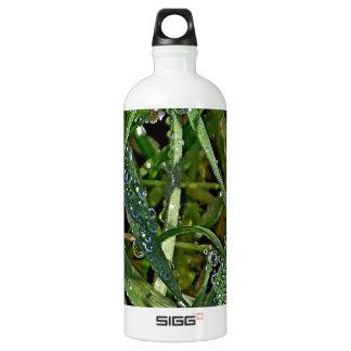 Morning dew on the grass SIGG traveller 1.0L water bottle