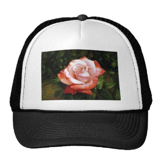 Morning dew on the rose faded trucker hats