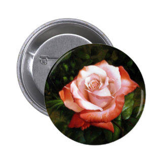 Morning dew on the rose faded pinback button