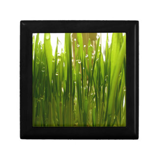 Morning dew small square gift box