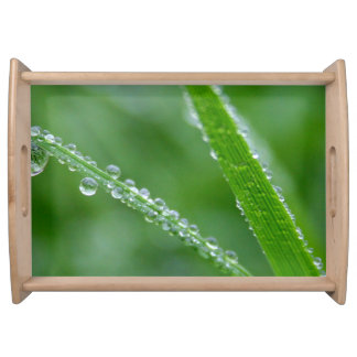 Morning Dew Serving Trays