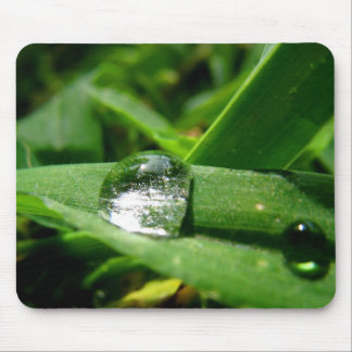 Morning dew water bubble #2 mouse pad
