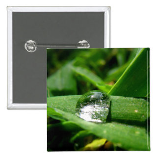 Morning dew water bubble 2 pinback buttons
