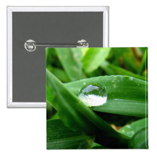 Morning dew water bubble pinback buttons