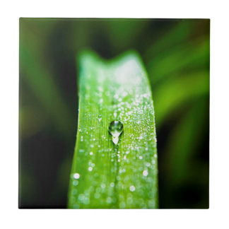 Morning Dew Water Droplet Small Square Tile