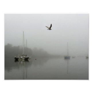 Morning Fog with Sailboats Photo Print
