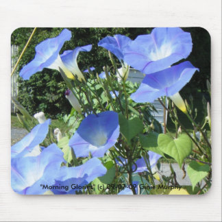 Morning Glories 09-07-09 Morning Glories c Mouse Pad