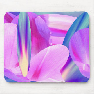 Morning Glories Upon Blue Sunset Mouse Pad