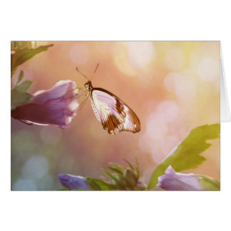 Morning Glory, Butterfly and Flowers Greeting Card