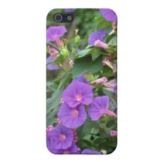Morning glory, Deya, Mallorca flowers Cases For iPhone 5