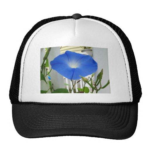 Morning Glory Flower Hats