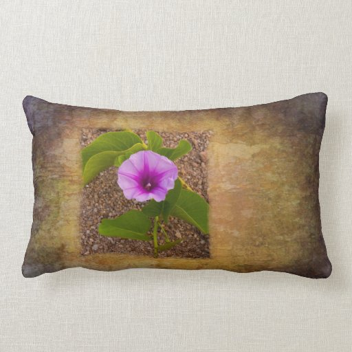 Morning glory flower on a textured background pillows