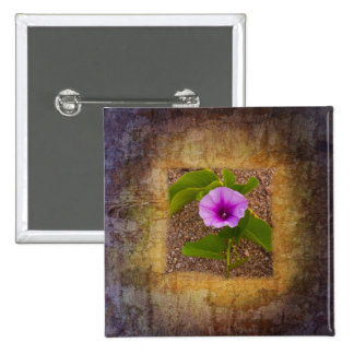 Morning glory flower on a textured background pins