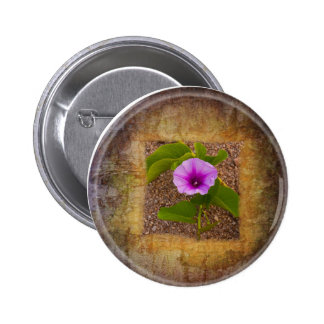 Morning glory flower on textured background pinback buttons