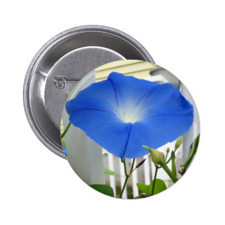 Morning Glory Flower Pinback Button