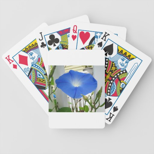 Morning Glory Flower Deck Of Cards