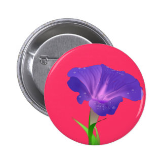 Morning Glory Flower Purple Buttons