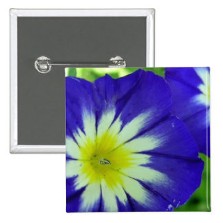 Morning Glory Flower Square Pin