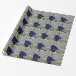 Morning Glory Flower Wrapping Paper