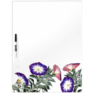 Morning Glory Flowers Floral Message Board Dry Erase Whiteboards