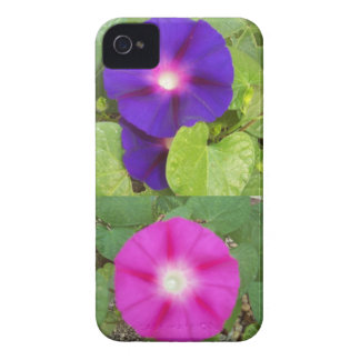 Morning Glory Flowers IPhone Case iPhone 4 Case-Mate Case