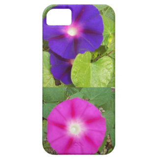 Morning Glory Flowers IPhone Case iPhone 5 Cases