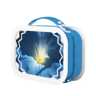 Morning Glory Flowers Lunch Box