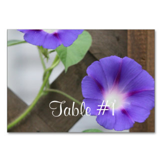 Morning Glory Flowers Table Card