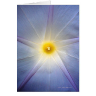 Morning Glory Heart Greeting Card